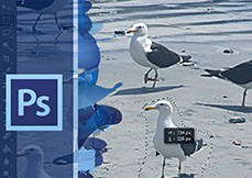 Curso Photoshop CS6 Atualização